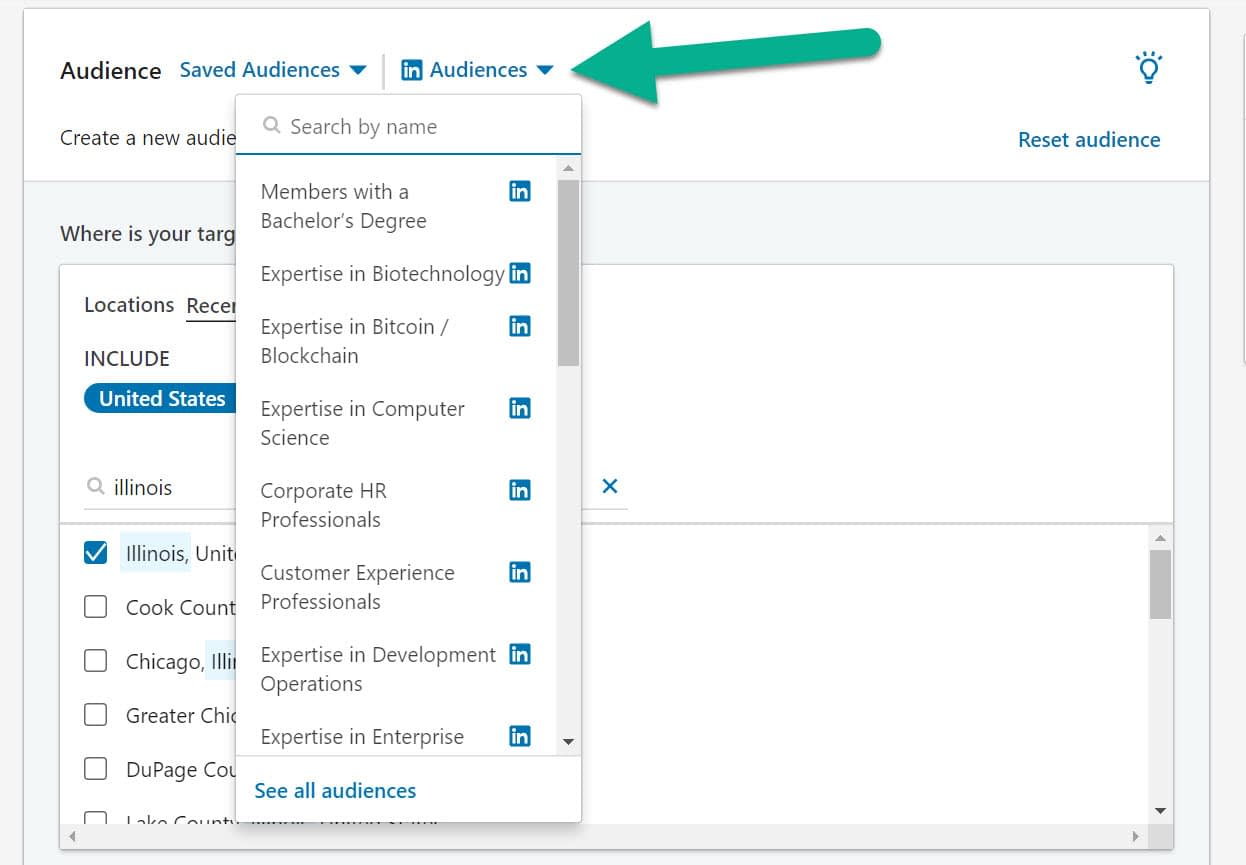 audiences for LinkedIn advertising