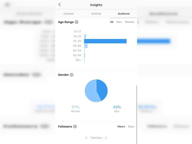 Audience demographic information on Instagram Insights.