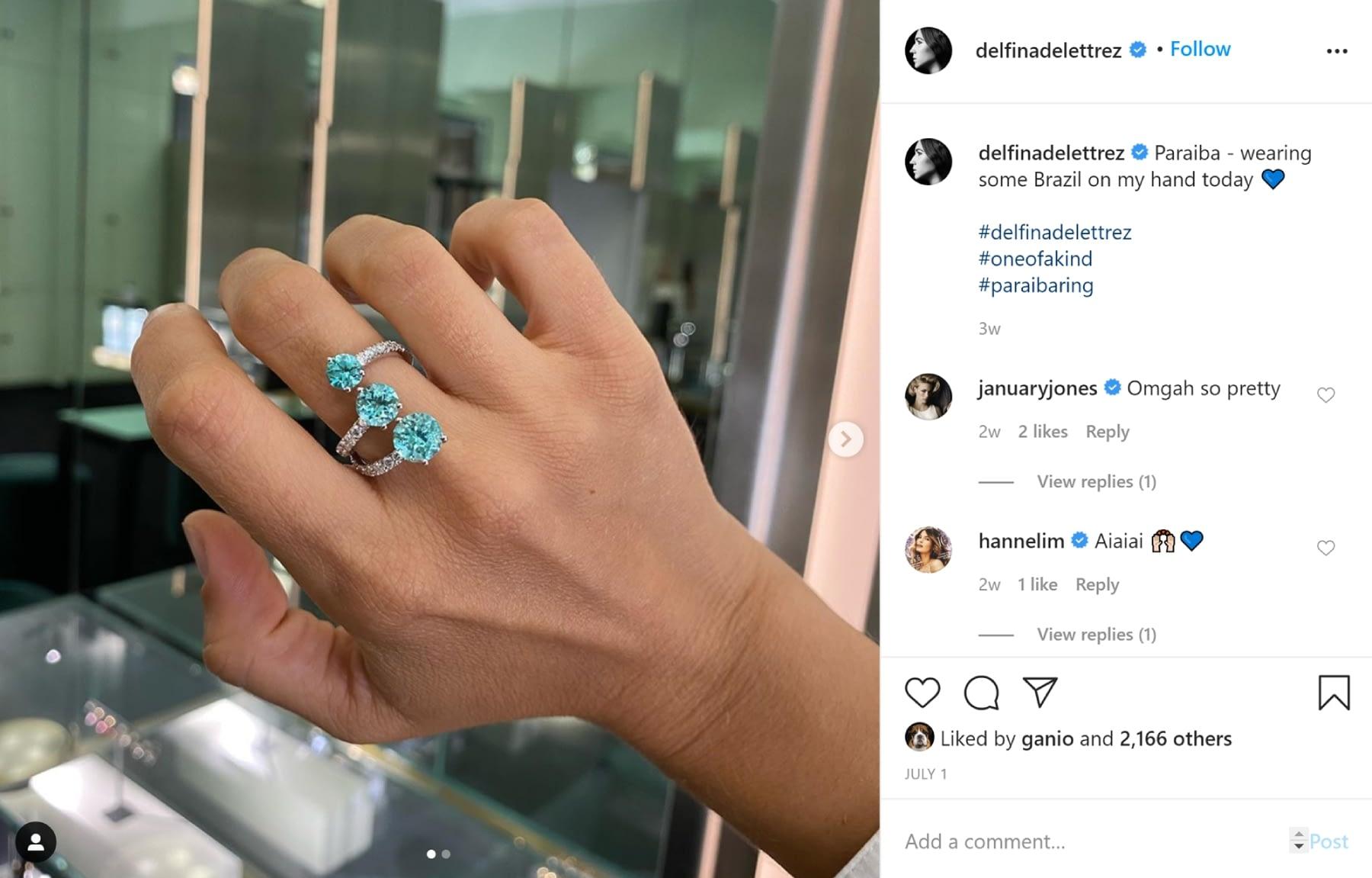How to Get Verified on Instagram: Delfina Delettrezz