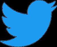 Twitter social media icon in blue