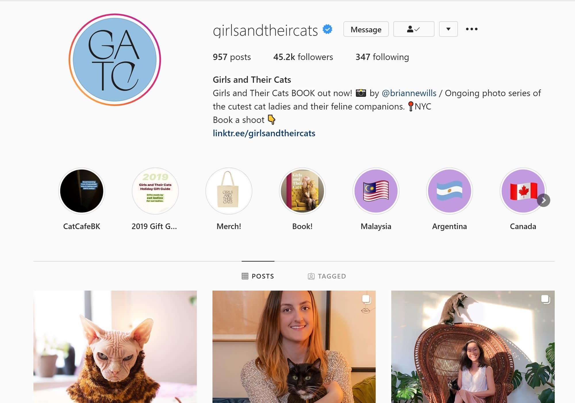 How to get verified on Instagram: Girls and Their Cats