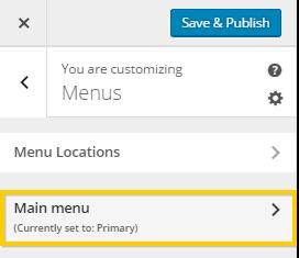 Viewing WordPress Menu Settings