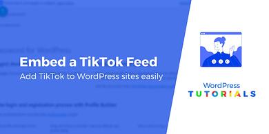 Embed TikTok feeds WordPress