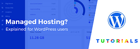 What Is Managed WordPress Hosting (And Do You Need It)?