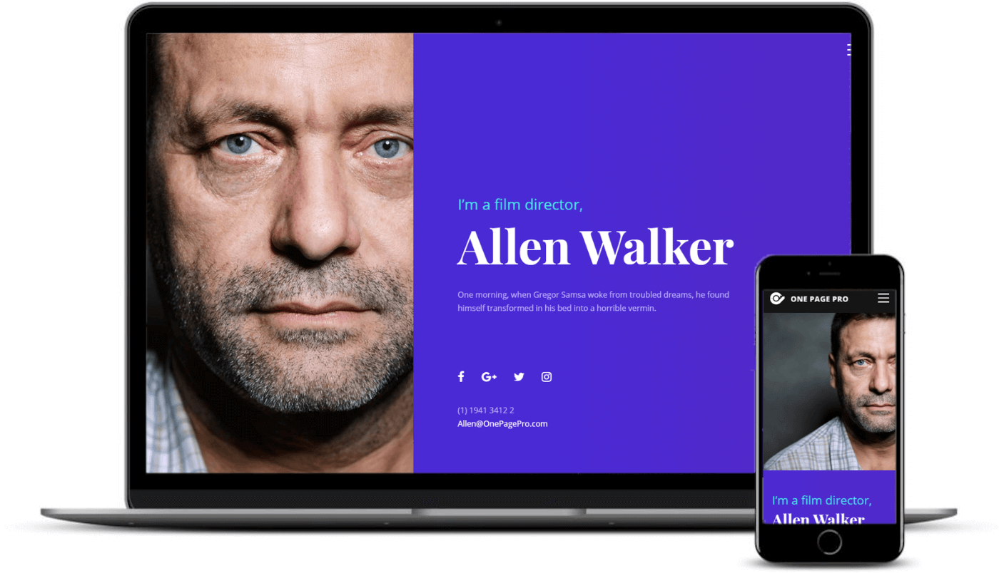 Best one-page WordPress themes: One Page Pro