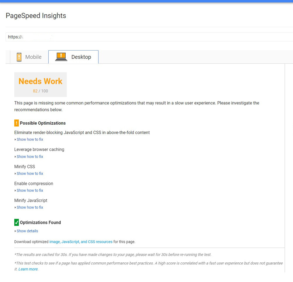 PageSpeed Insights Test Results