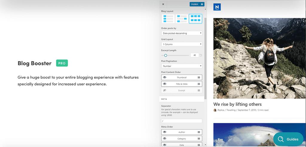 Neve's premium 'Blog Booster' option.