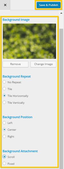 Changing WordPress Background Options