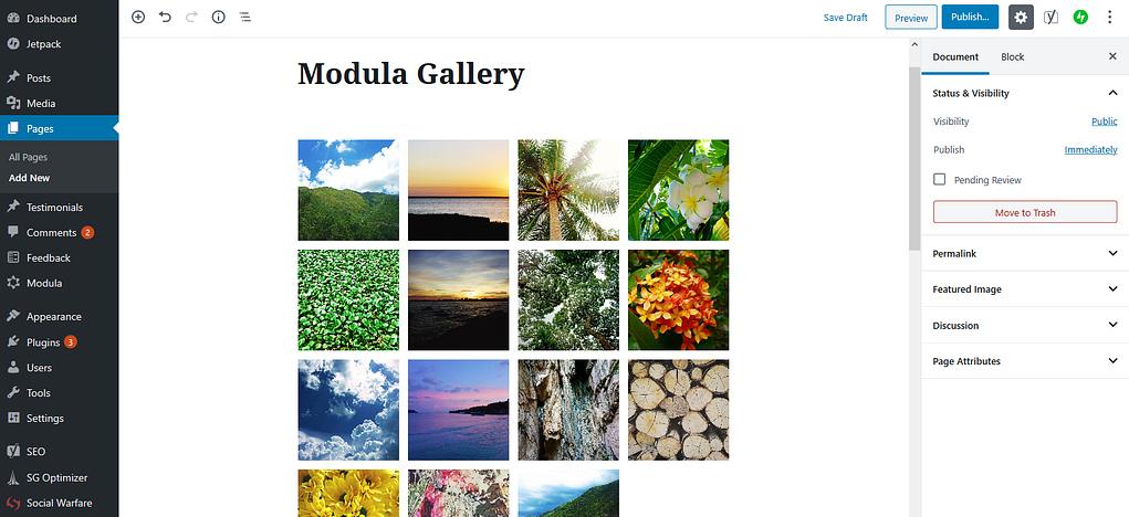 Modula gallery settings