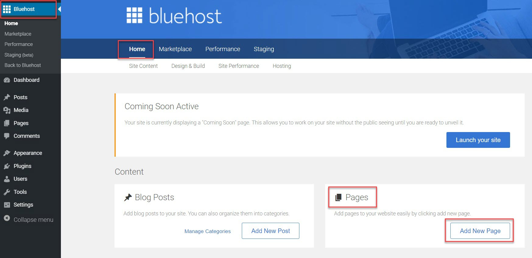 The Bluehost pages area after you install WordPress