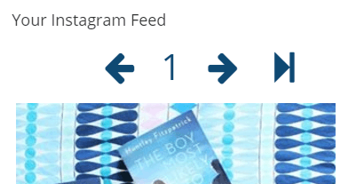 An example of Instagram Feed WD in action on a widget.