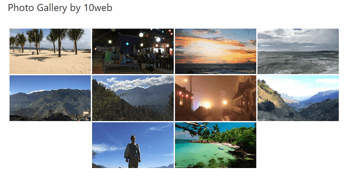 photo gallery by 10web example