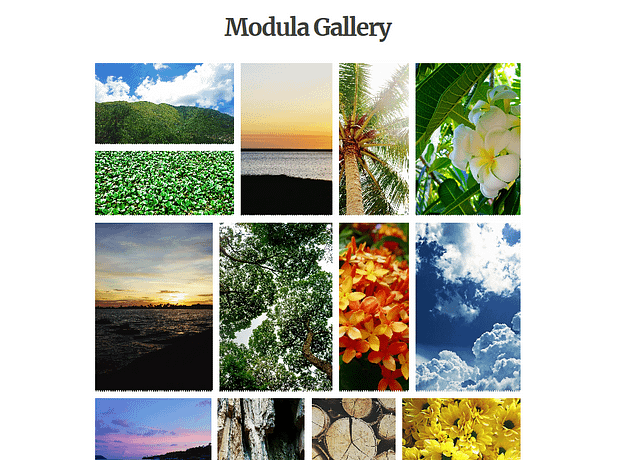 Modula gallery example