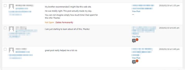 WordPress'teki spam yorumlarına bir örnek.