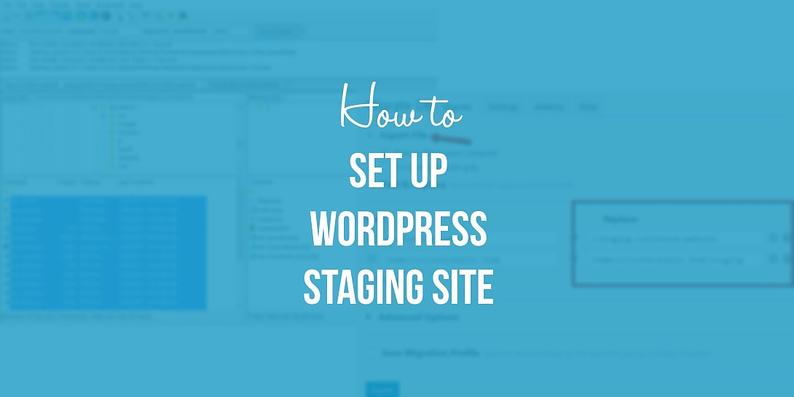 WordPress staging site