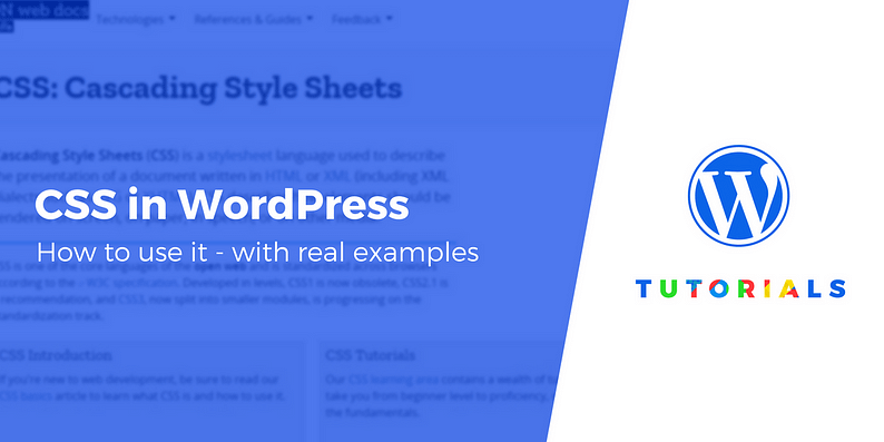 css in wordpress