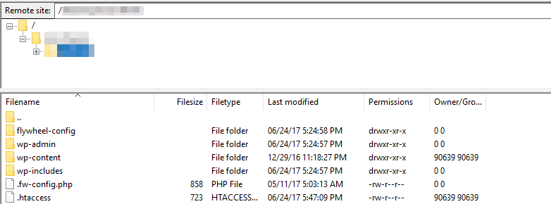 The WordPress root folder.