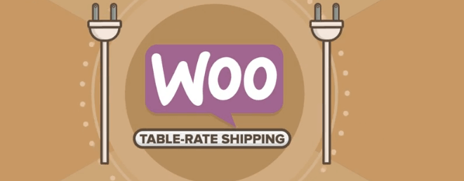 The Table Rate Shipping plugin.