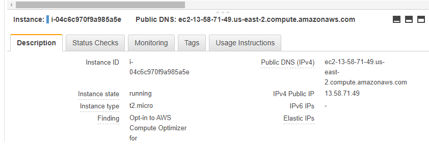 Checking out your instance's public IP.