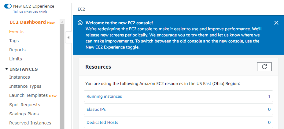 Accessing your running instances.