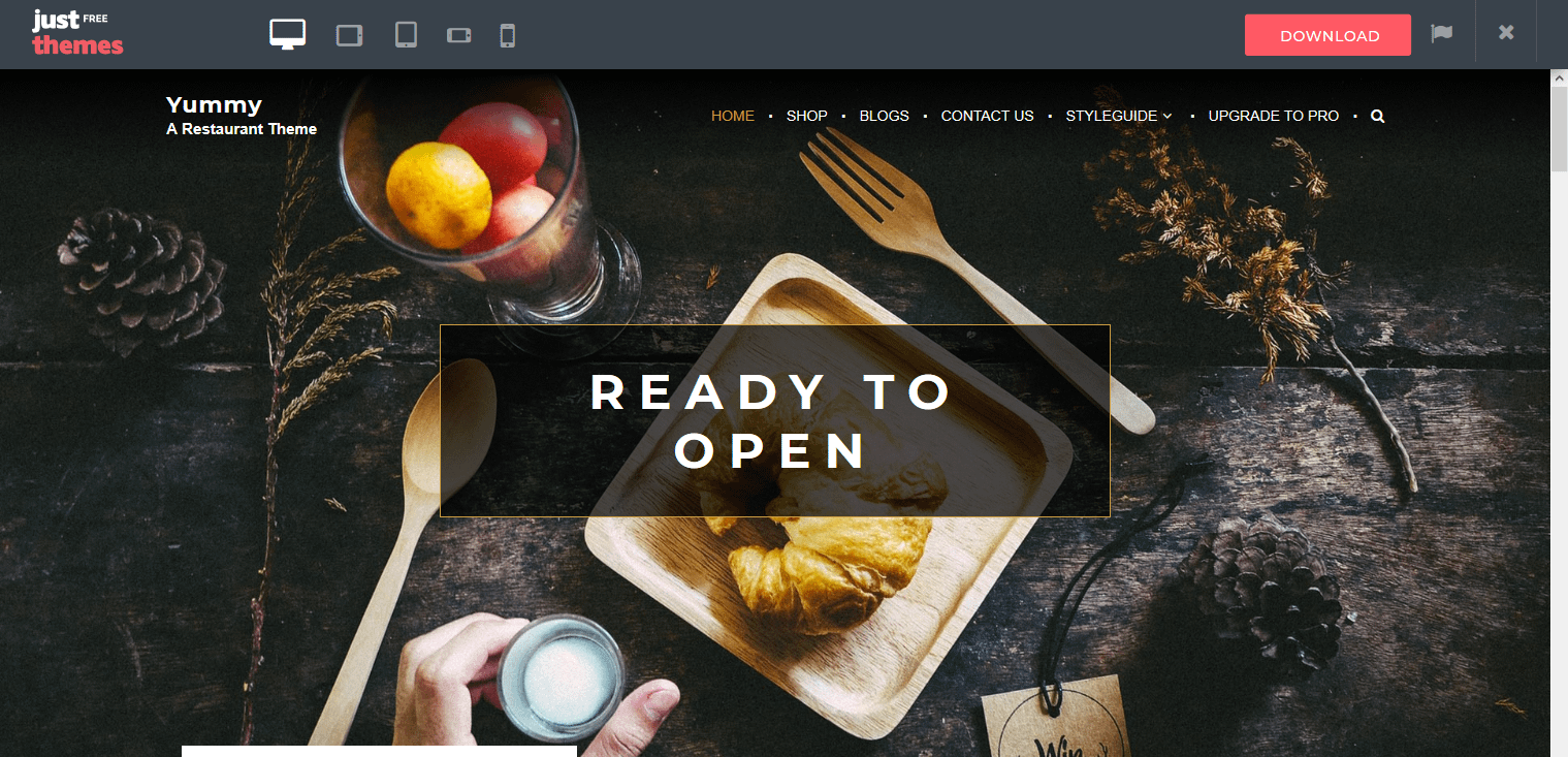 how to start a food blog and make money with Yummy theme