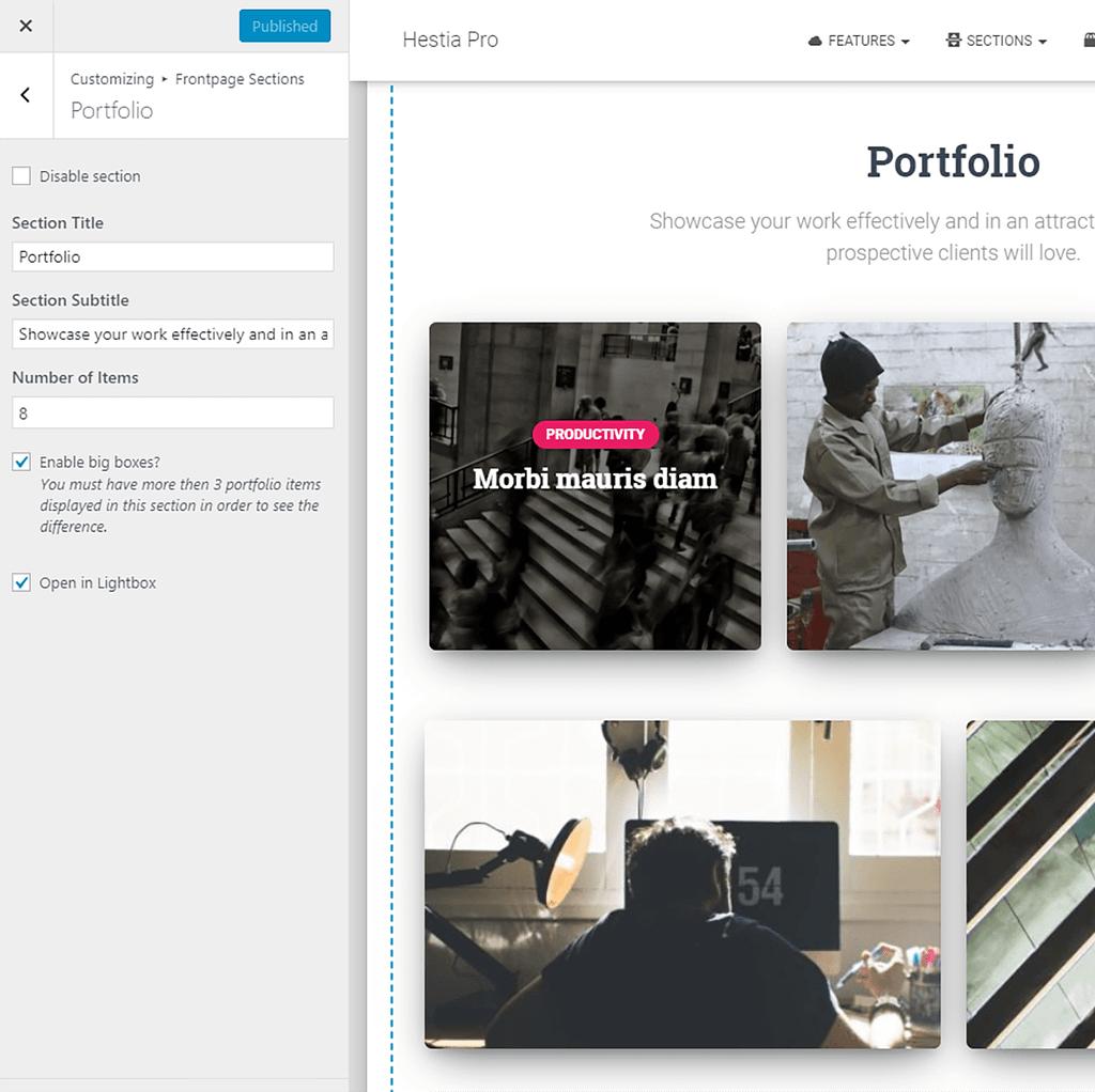 The Hestia Pro portfolio options as seen in the WordPress customizer