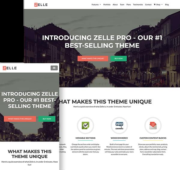 zelle-pro-wordpress-theme-full-screen