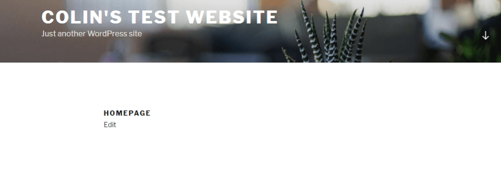 example of a WordPress static homepage