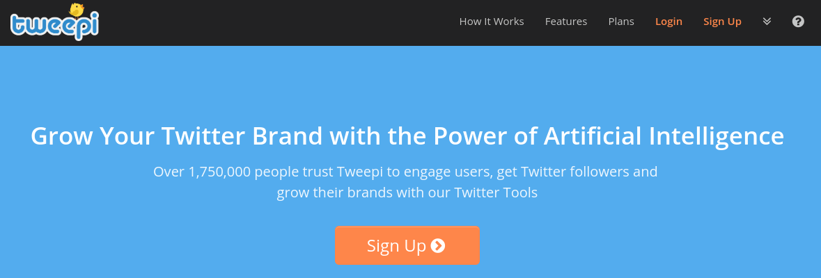 The Tweepi homepage.