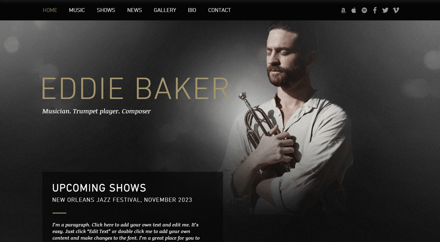 An example of a musician's website.