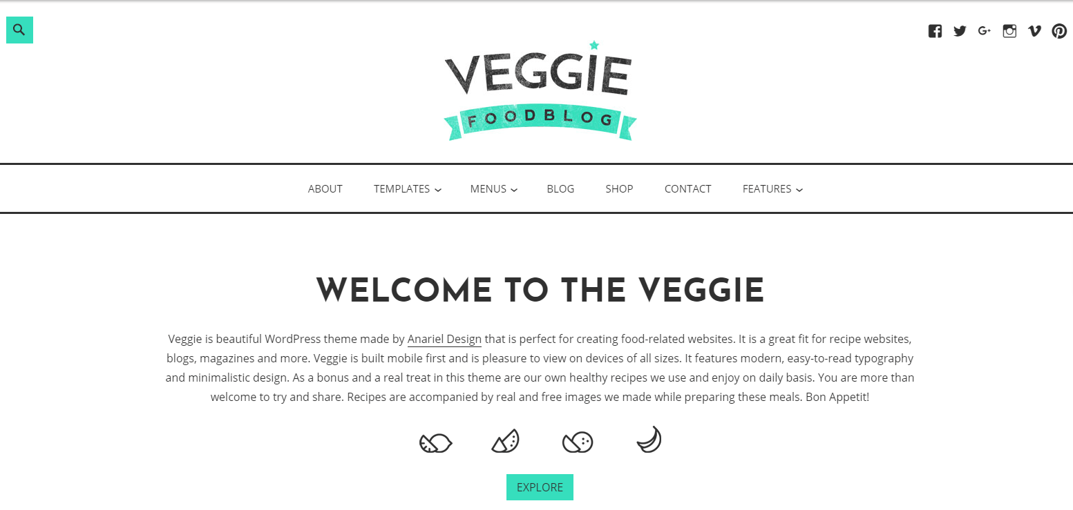 how to start a food blog and make money with the veggie theme