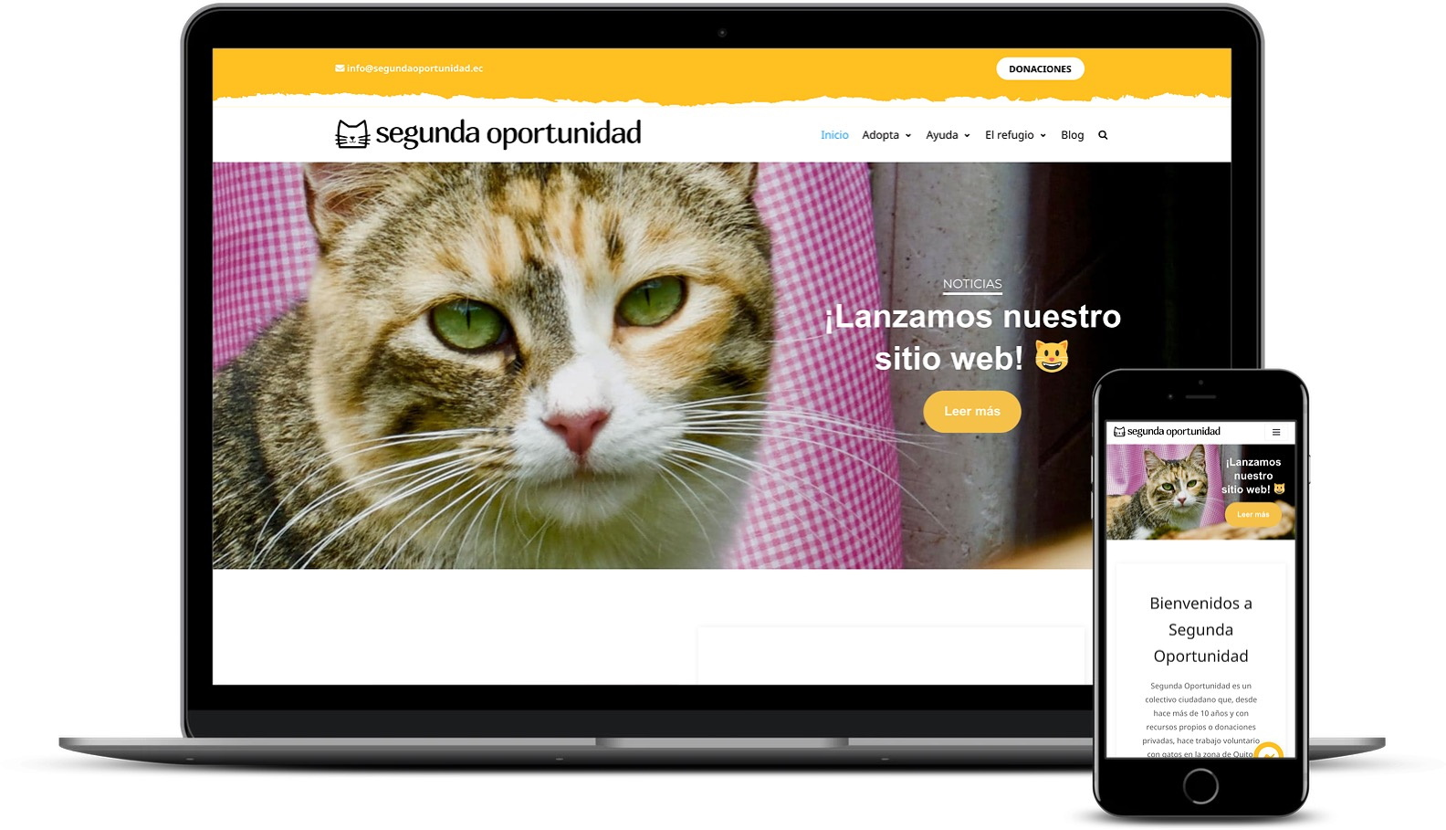 Segunda Oportunidad website built with Neve