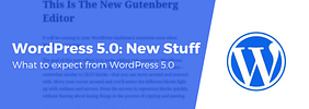 What's New in WordPress 5.0, Plus What to Expect From the Block-Based Editor