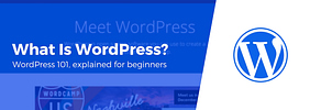What Is WordPress & What Is It Used‎ For? Beginner's Guide (2019)