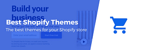 20+ Best Shopify Themes in 2020: Conversion-Friendly and Beautiful
