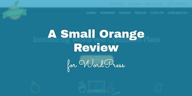 A Small Orange Review for WordPress