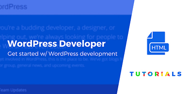how to become a wordpress developer