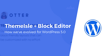How we've evolved our products for WordPress 5.0
