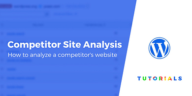 Competitor Site Analysis