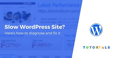 WordPress Slow