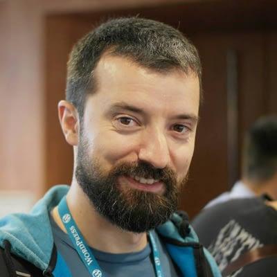 Nemanja Aleksic Interview - ThemeIsle