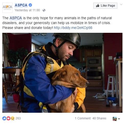 ASPCA post