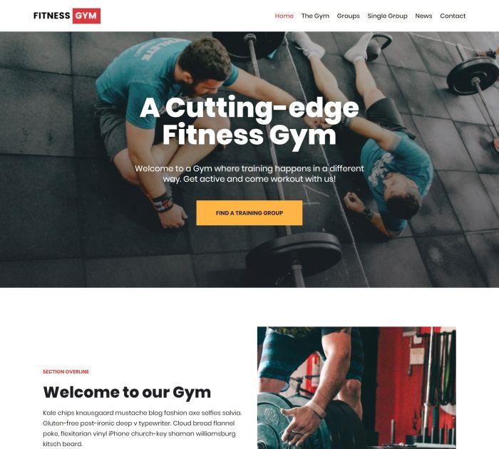 Free sports & fitness WordPress themes #1: Neve