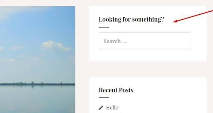 search-widget-demo