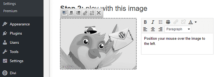 Customizing the images within your newsletter.