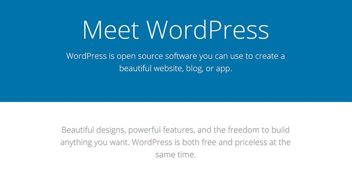 WordPress web sitesi.