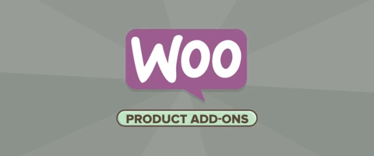 The Product Add-Ons plugin.