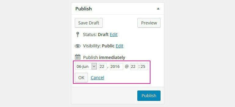 Set Schedule Date