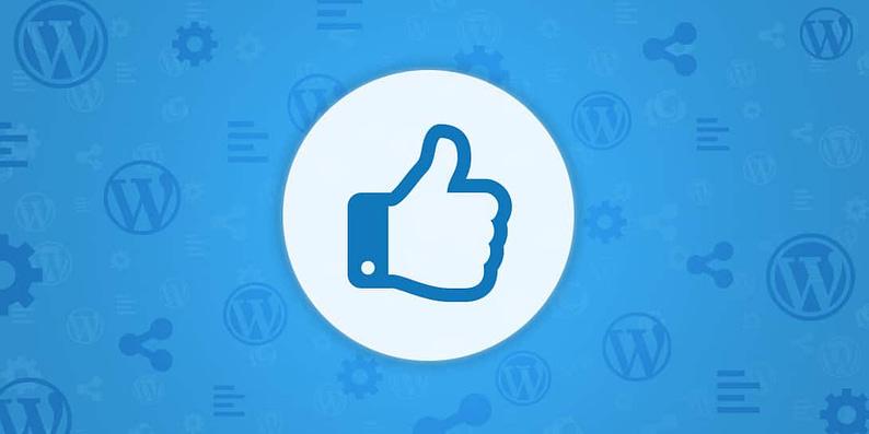 test a WordPress theme