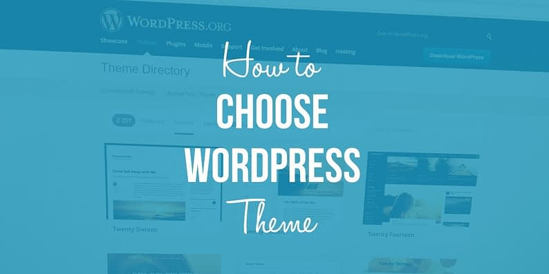 how to choose a WordPress theme